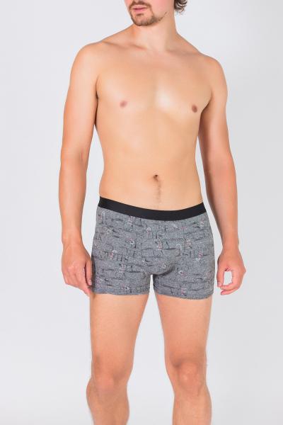 Трусы мужские, артикул: MN8039, цвет - серый